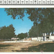 Postales: 11.526 TARJETA POSTAL, PARQUE MUNICIPAL DE ALMADEN, CIUDAD REAL. Lote 54560147