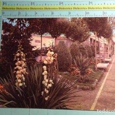 Postales: POSTAL DE CIUDAD REAL. AÑO 1966. PUERTOLLANO, JARDINES DE SAN GREGORIO. 1515. Lote 102549859