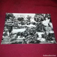 Postales: BELMONTE. Lote 140885018