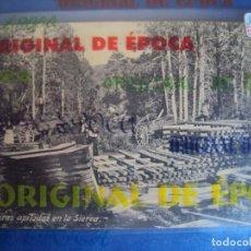 Postales: (PS-59374)POSTAL DE CUENCA-MADEIRAS APOLADAS EN LA SIERRA. Lote 150437394