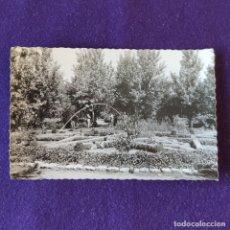 Postales: POSTAL DE VALDEPEÑAS (CIUDAD REAL). DETALLE DEL PARQUE. AÑOS 50. Lote 178286403