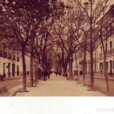Postales: ALBACETE PASEO ALFONSO XII. Lote 180438120