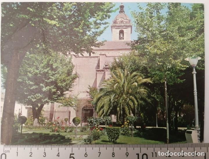 CIUDAD REAL. PRADO Y CATEDRAL (Postales - España - Castilla la Mancha Moderna (desde 1940))