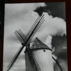 Postales: FOTO POSTAL DE MOLINO DE VIENTO DE MOTA DEL CUERVO, CUENCA, ED. AMIGOS DE LOS MOLINOS Y MUSEO MANCHE. Lote 269341608