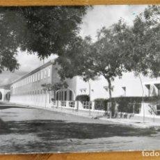 Postales: FOTO POSTAL DE TOMELLOSO (CIUDAD REAL) VIVIENDAS PROTEGIDAS, SIN CIRCULAR. Lote 275214163