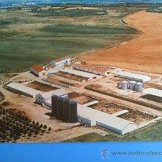 Postales: POSTAL DE SAN MIGUEL DE PEDROSA (VALLADOLID). EXPLOTACIONES AGRICOLAS ARGALES. AÑOS 60.. Lote 12351882