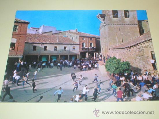 BENAVENTE ZAMORA FIESTA DEL TORO ENAMORADO 1968 (Postales - España - Castilla y León Moderna (desde 1940))
