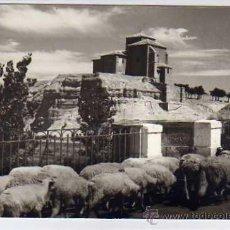 Postales: PALENCIA. E. GRANDE FOTOGRAFO. CARRIÓN DE LOS CONDES. PALENCIA. SIN REVERSO. SIN CIRCULAR.. Lote 25195301
