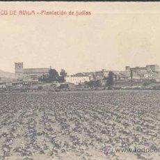 Postales: BARCO DE ÁVILA (ÁVILA).- PLANTACIÓN DE JUDIAS. Lote 25524138