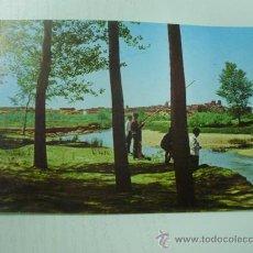 Cartes Postales: VALDERAS - LEON - ALAMEDAS DEL CEA - AÑO 1.967 - (PESCADORES EN EL RIO). Lote 30191225