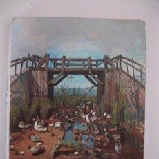 Postales: MUSEO DE CAZA PALACIO REAL RIOFRIO SEGOVIA. Lote 31288161