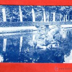 Postales: LA GRANJA DETALLE DE LA CARRERA DE CABALLOS SEGOVIA - EDICIÓN GRAFOS - POSTAL - POSTAL . Lote 41198143