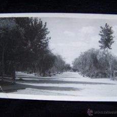 Postales: POSTAL FOTOGRÁFICA CIRCULADA 1962 PARQUE MUNICIPAL HERRERA DE PISUERGA PALENCIA FOTO MAZUELAS. Lote 41789921
