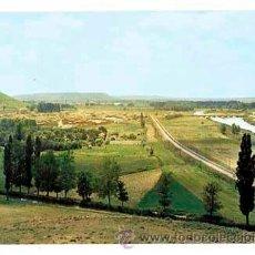 Postales: PALENCIA MONZON DE CAMPOS PANORAMICA. ED. SICILIA. CIRCULADA. Lote 179142507