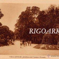 Postales: VALLADOLID.- JARDINES DEL CAMPO GRANDE. Lote 48803980