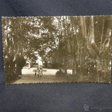 Postales: POSTAL EL ESPINAR SEGOVIA LA FUENTE DEL PARQUE NO EDICION NO FOTOGRAFO NO CIRCULADA. Lote 49126083