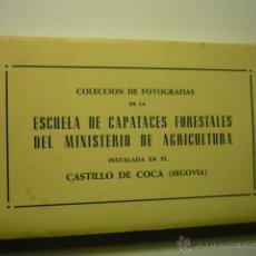Postales: CARPETA POSTALES HUECOGRABADO CASTILLO DE COCA.-ESCUELA CAPATACES FORESTALES MINIS.AGRICULTURA--CM. Lote 52947325