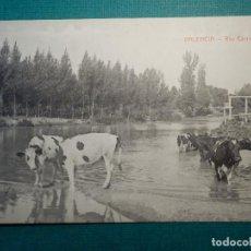 Postales: POSTAL - ESPAÑA - PALENCIA - RIO CARRION - CASTAÑEIRA Y ALVAREZ - EDICION ABUNDIO Z. MENENDEZ. Lote 71655043