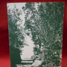 Postales: ANTIGUA POSTAL - CANDELARIO CAMINO DEL RIO DEL BARQUILLO - SALAMANCA -. Lote 109454011