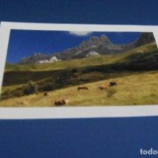 Postales: POSTAL SIN CIRCULAR - MONTAÑA RIAÑO - LEON - EDITA TURISMO. Lote 119054495