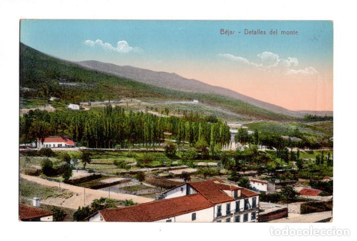 BÉJAR (SALAMANCA).- DETALLES DEL MONTE. ED. HIJO DE DANIEL R. ARIAS (Postales - España - Castilla y León Antigua (hasta 1939))