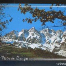 Postales: PICOS DE EUROPA. *EL JISO - PRAO CORTÉS...* ED. FOTO SANDI Nº 51. CIRCULADA.. Lote 140519362