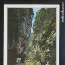 Postales: PICOS DE EUROPA. *DESFILADERO DEL RÍO CARES...* ED. FOTO SANDI. NUEVA.. Lote 140519694