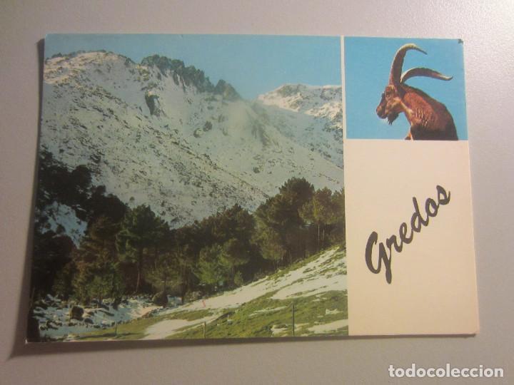 POSTAL SIERRA DE GREDOS ( AVILA ) (Postales - España - Castilla y León Moderna (desde 1940))