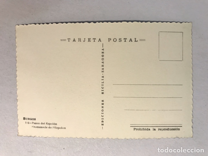 Postales: BURGOS. Postal No.114, Paseo del Espolón. Edita: Ed. Sicilia (h.1950?) Sin circular... - Foto 2 - 180112278
