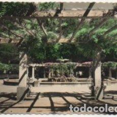 Postales: POSTAL DE VALLADOLID. CAMPO GRANDE. FUENTE DEL CISNE P-CASTLE-1269. Lote 183896616