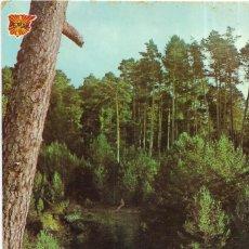 Postales: == P1781 - POSTAL - QUINTANAR DE LA SIERRA - NACIMIENTO RIO ARLANZA. Lote 194518570