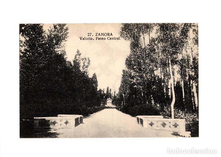 ZAMORA.- BOSQUE DE VALORIO. PASEO CENTRAL. (Postales - España - Castilla y León Antigua (hasta 1939))