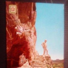 Postales: AMEYUGO-MONUMENTO AL PASTOR.. Lote 211783368