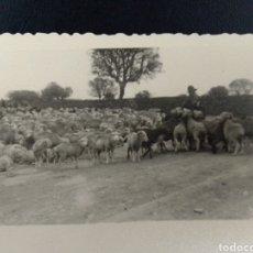 Postales: 1956 FELICITACION DE NAVIDAD TARJETA, PAPEL PLASTIFICADO, CIRCULADA. Lote 236088635