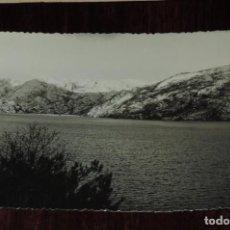 Postales: FOTO POSTAL DEL LAGO DE SANABRIA, ZAMORA, FOTO QUINTAS, NO CIRCULADA.. Lote 253475365