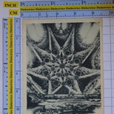 Postales: POSTAL DE BURGOS. SIGLO XIX - 1905. CATEDRAL TECHO DE LA TORRE DEL CORO. 58 ROMO FÜSSEL. 931. Lote 277850148