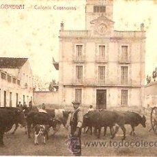 Postales - POSTAL PRAT DEL LLOBREGAT COLONIA CASANOVAS - 129222690