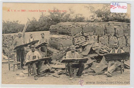 (PS-9480)POSTAL DE SANT FELIU DE GUIXOLS-INDUSTRIA SURERA-TRIADORS DE SURO (Postales - España - Cataluña Antigua (hasta 1939))