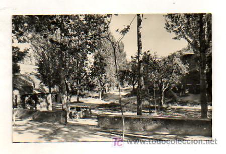 SOLSONA. PAISAJE DE LA MARE DE LA FONT. (ED. RAYMOND, Nº 3) (Postales - España - Cataluña Antigua (hasta 1939))