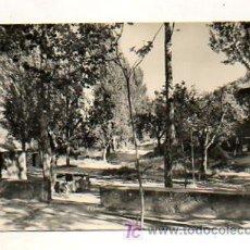 Postales: SOLSONA. PAISAJE DE LA MARE DE LA FONT. (ED. RAYMOND, Nº 3). Lote 18685780