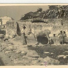 Postales: (PS-17351)POSTAL FOTOGRAFICA DE PERELLO(TARRAGONA)-FONT. Lote 19439010