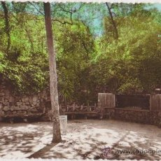 Postales: MANANTIAL BURRIACH,FOTO GUELL-ARGENTONA. Lote 20054652