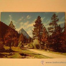 Postales: POSTAL DE PIRINEOS DE LERIDA.-EL PALLARS VALLE DE ESPOT- CAMINO DE SAN MAURICIO. Lote 25289913