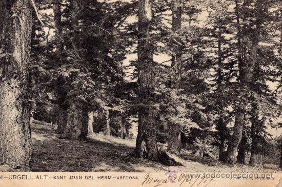 URGELL ALT Nº 144 SANT JOAN DEL HERM ABETOSA ESCRITA CIRCULADA CON SELLO (Postales - España - Cataluña Antigua (hasta 1939))