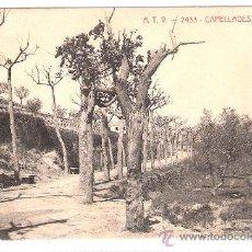 Postales: CAPELLADES - VOLTANTS - A.T.V.- 2433 - (6639). Lote 27725634