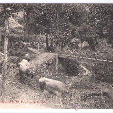 Postales: GELIDA - FONT DE S. MIQUEL - A.T.V.- 1917 - (6720). Lote 27734026