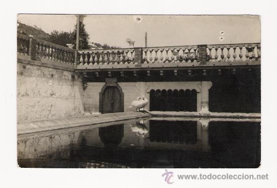 BARCELONA .- LA FONT DEL LLEO EN PEDRALBES ESTANQUE .- POSTAL FOTOGRAFICA (Postales - España - Cataluña Antigua (hasta 1939))