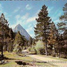 Postales: POSTAL A COLOR 5021 PIRINEOS DE LERIDA EL PALLARS VALLE DE ESPOT CAMINO DE SAN MAURICIO. Lote 30750908