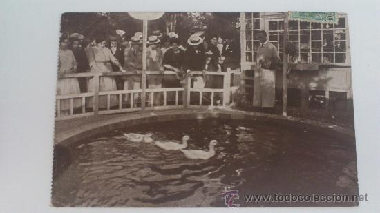 TURÓ PARK, BARCELONA, JUEGO DE LOS PATOS, 1914 (Postales - España - Cataluña Antigua (hasta 1939))