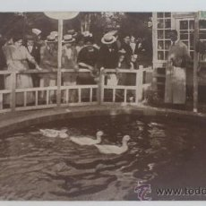 Postales: TURÓ PARK, BARCELONA, JUEGO DE LOS PATOS, 1914. Lote 32307729